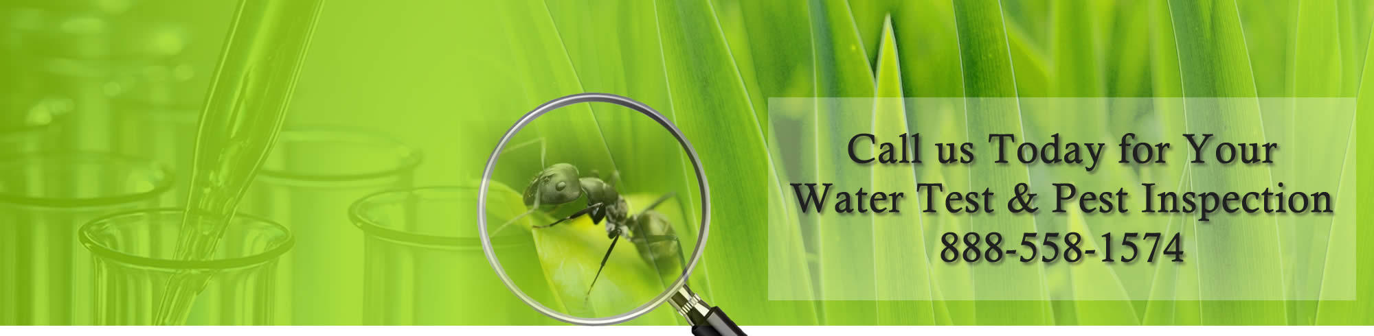 CT Water Tests & Termite Inspection
